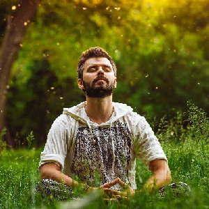 Ein Mann mit geschlossenen Augen meditiert auf einer Wiese. So kann man Focusing kennen lernen.