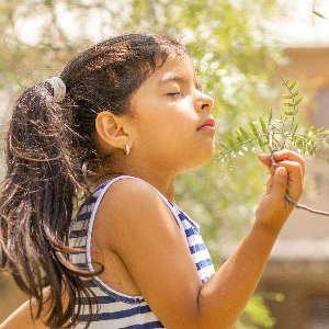 Ein kleines Mädchen riecht an Blättern eines Baumes. Kinderfocusing in Bonn